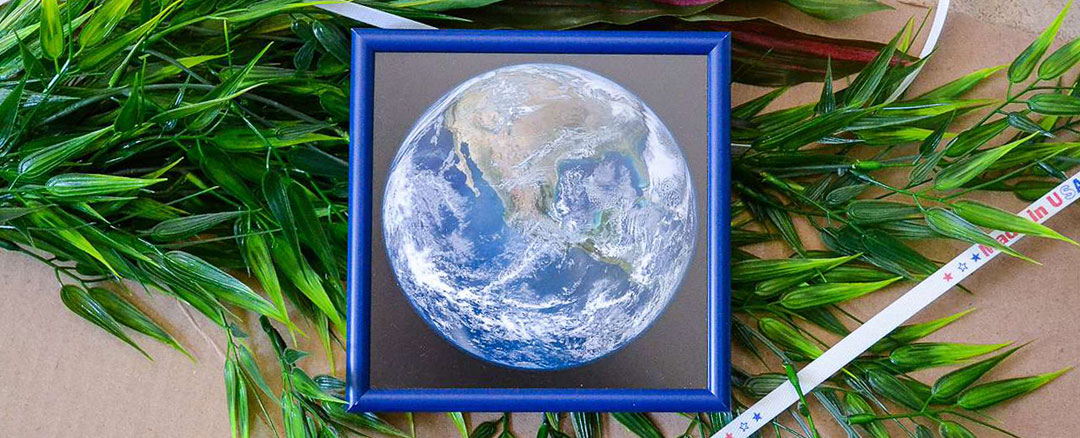 Planet Earth photo inside blue metal frame with plant