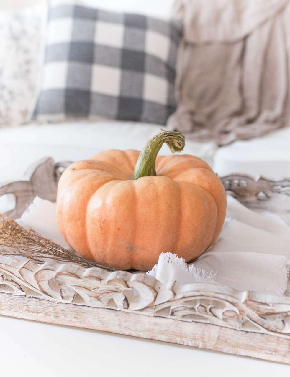 autumn pumpkin and plaid pillow
