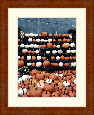 Fall art print - orange and white pumpkins - Dayton In Umber with antique white matting