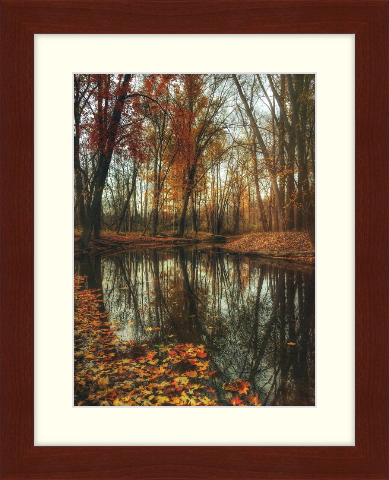 Fall art print - autumn leaves around pond - Derby in Cherry with Cloud Matting