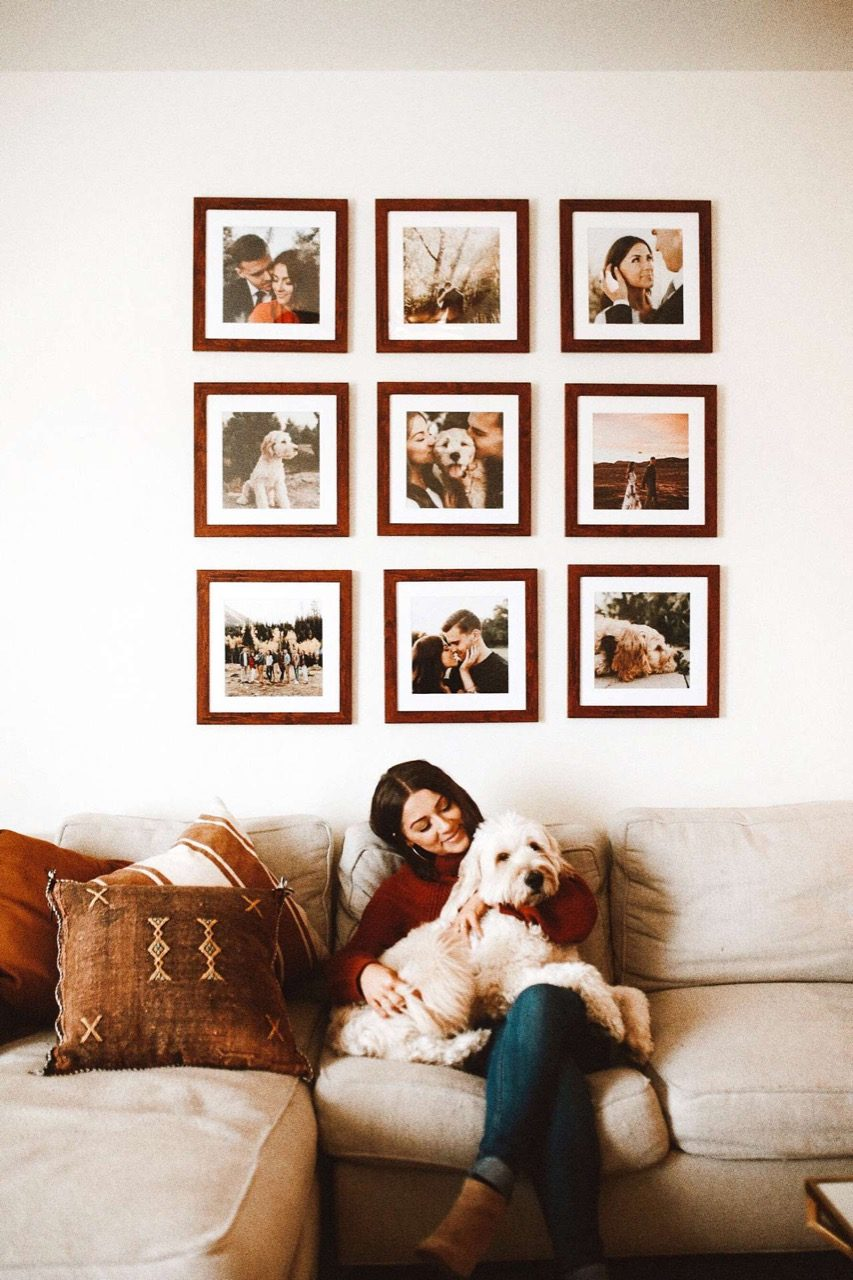 gallery wall with pet picture frames