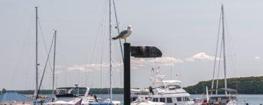 Boats in Michigan