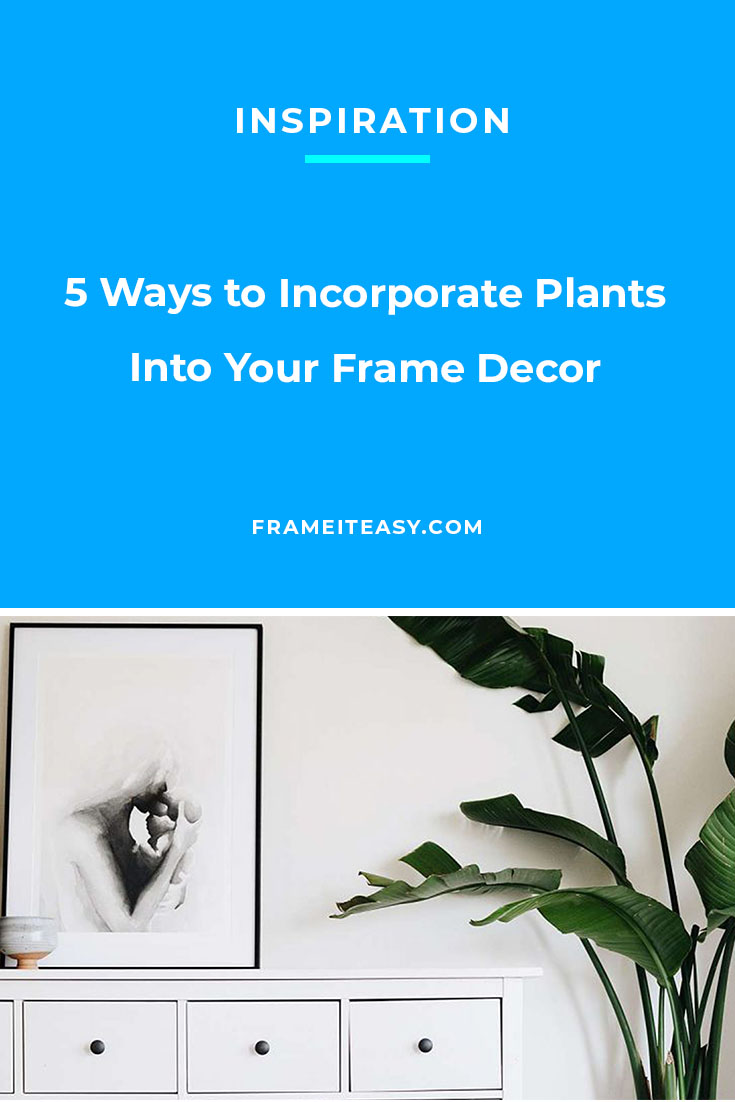 5 Ways to Incorporate Plants Into Your Frame Decor