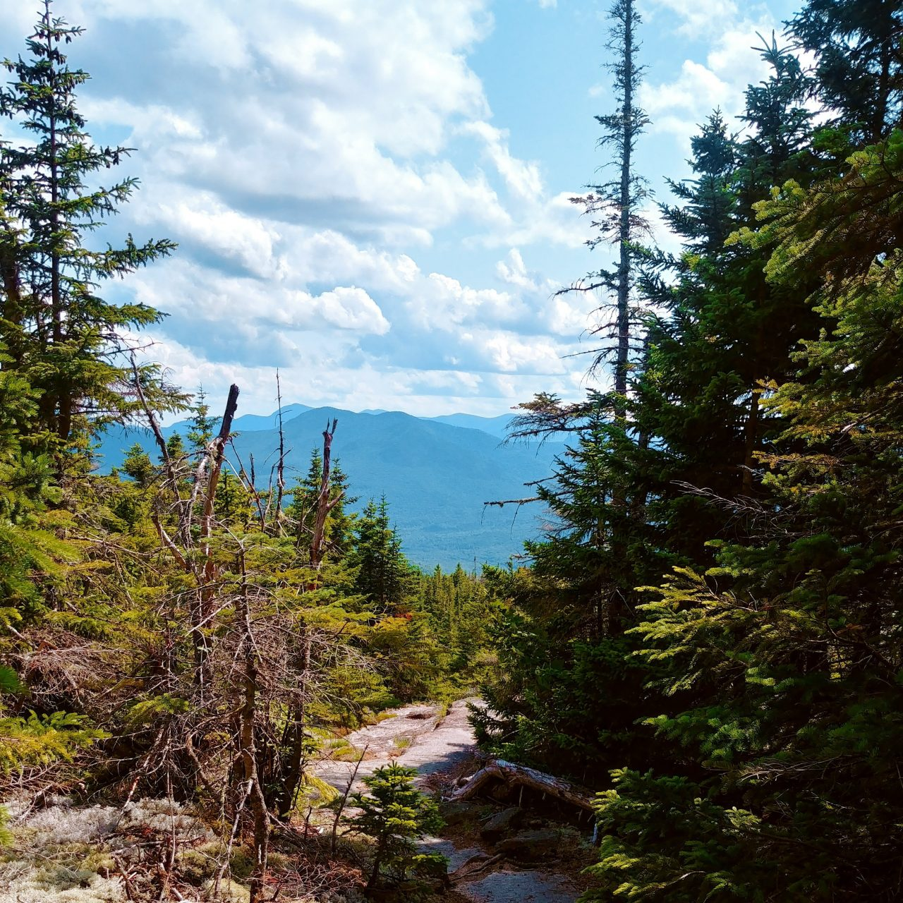 Top of mountain in New Hampshire