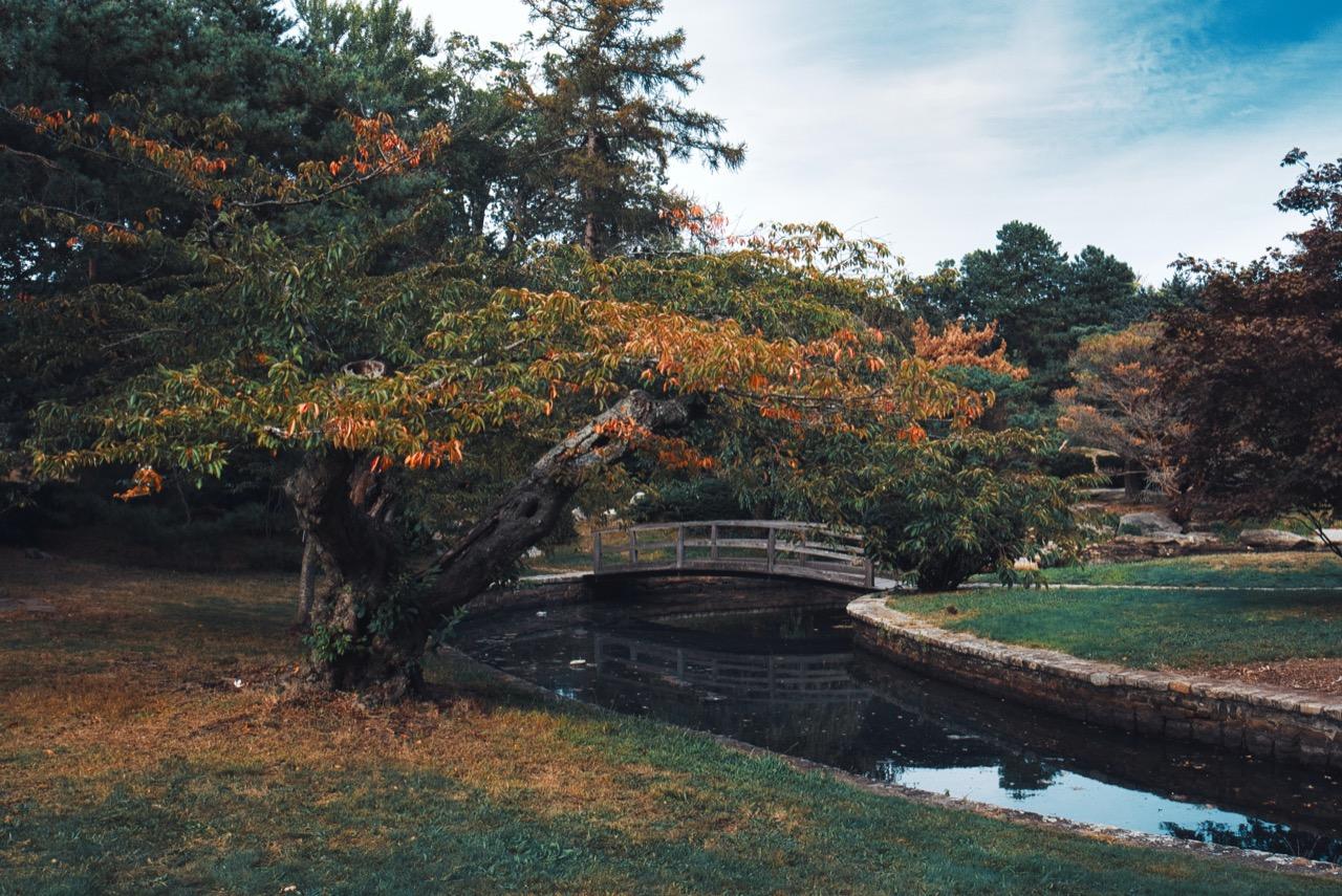 Roger Williams Park
